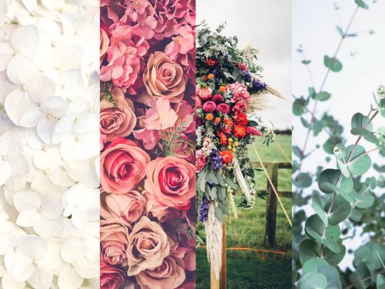 4 tipos de novia: ¿cuál eres tú?